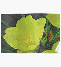 Penciled Wildflower Poster