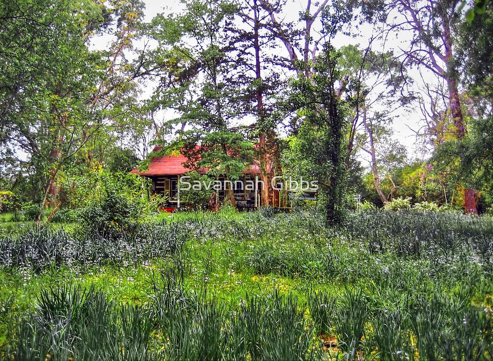 Little House  by Savannah Gibbs