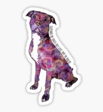 Pit Bulls May Lick You To Death Sticker