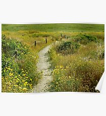 May Your Path Be Filled With Sunshine Poster
