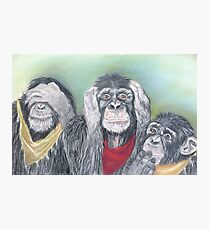 Wise guys!!! Photographic Print