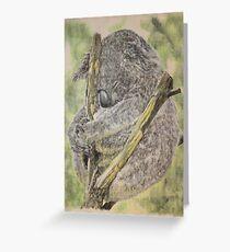 Phascolarctos cinereus Greeting Card