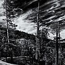 Lake Tahoe 2 by Jeffrey  Sinnock