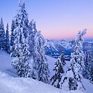 Evening Snowscape by mlphoto