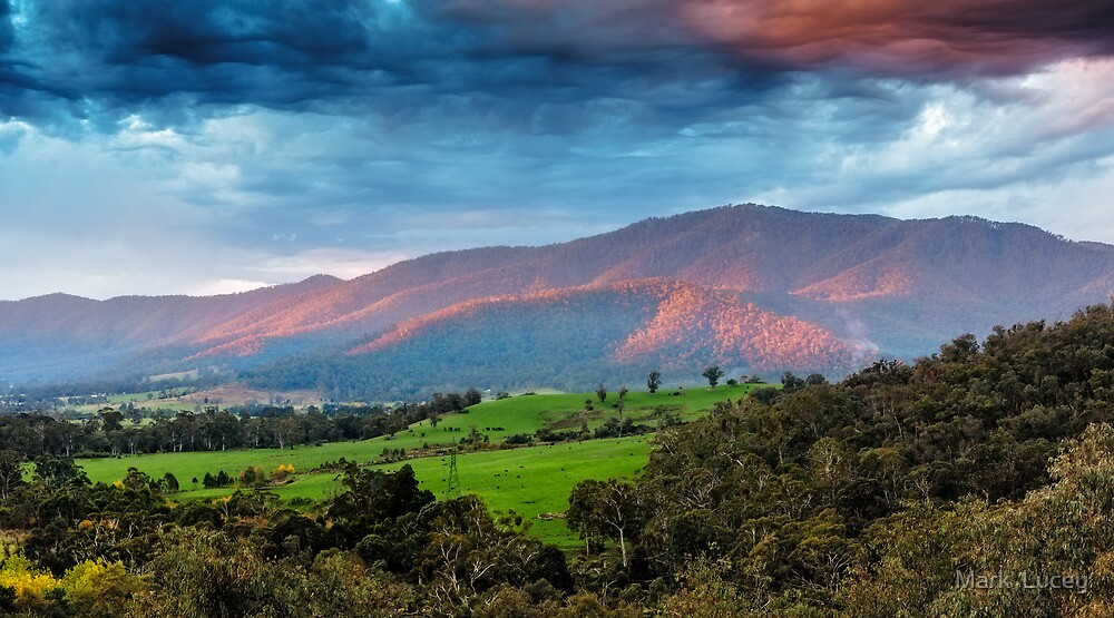 The Smoked Cloud by Mark  Lucey