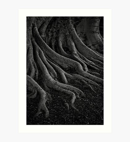 entrenched Art Print