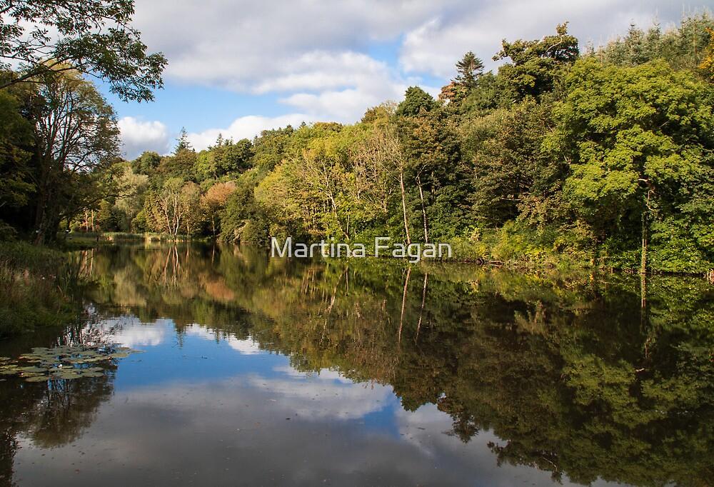 Castlecomer Lakes by Martina Fagan