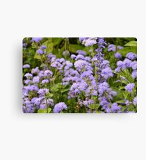 In the lovely violet fields we daydreamed and watched the clouds go by Canvas Print