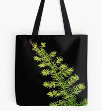 Fern, Fern, Asparagus Fern Tote Bag
