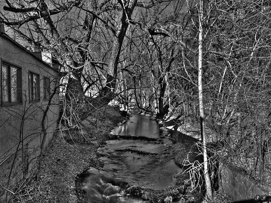 Dark Waters by JFantasma Photography by JFantasma