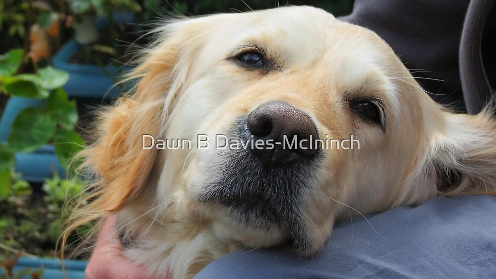 Loving Companion by Dawn B Davies-McIninch