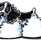 Black & White Parti Cocker Spaniel by offleashart