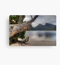 Dove Lake. Canvas Print