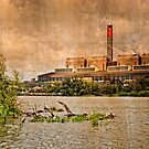 Huntly Power Station by mlphoto