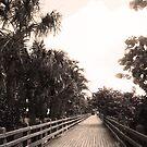 South Beach Boardwalk by erinv2000
