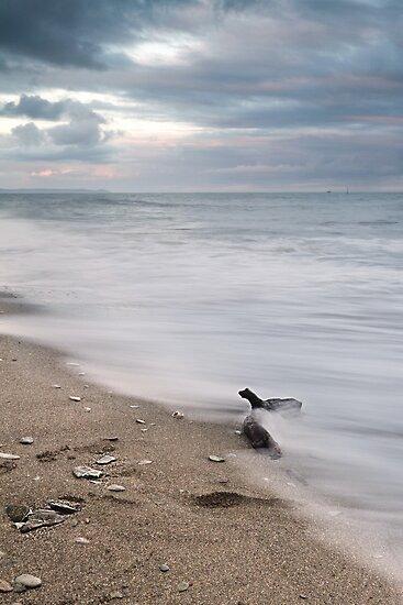 Ocean View by Paul  Burnett