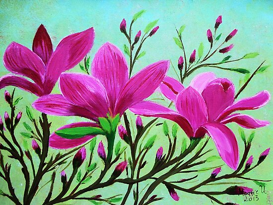 Magnolias by maggie326