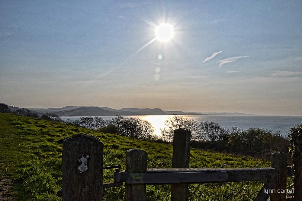 Morning Light Over Lyme  by lynn carter