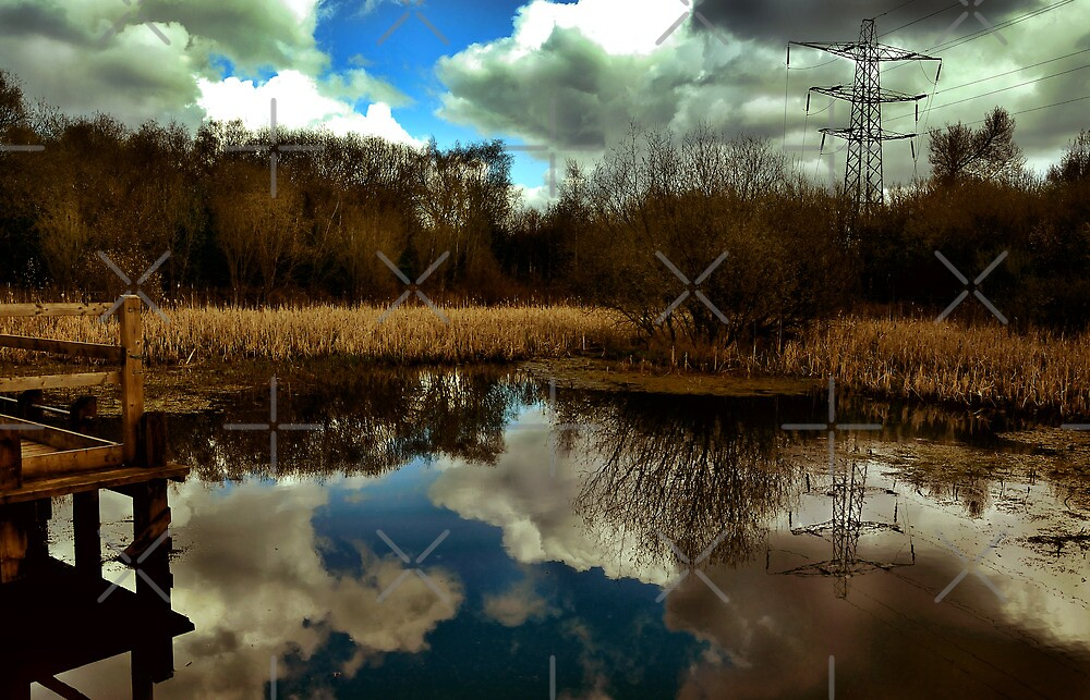 Nature reserve landscape by Melanie Collette