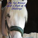 Banner for Top Ten - Just a Part of It by quiltmaker