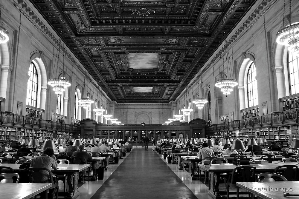 the reading room by natalie angus