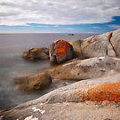 Bay of Fires, Tasmania by Stephanie Johnson
