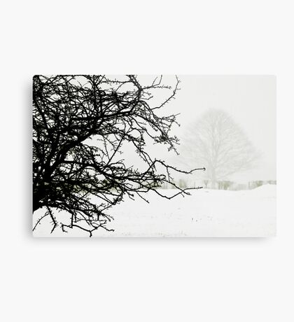 Impending blizzard Metal Print