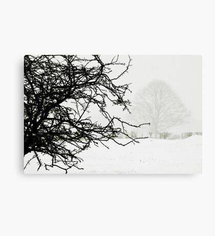 Impending blizzard Canvas Print