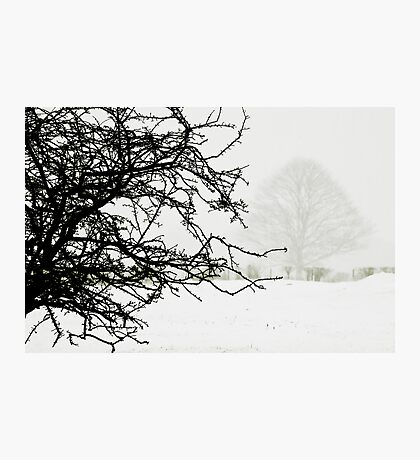 Impending blizzard Photographic Print