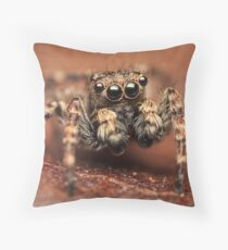 Sitticus pubescens male jumping spider Throw Pillow