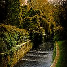 Roath Park Cardiff Wales by mlphoto