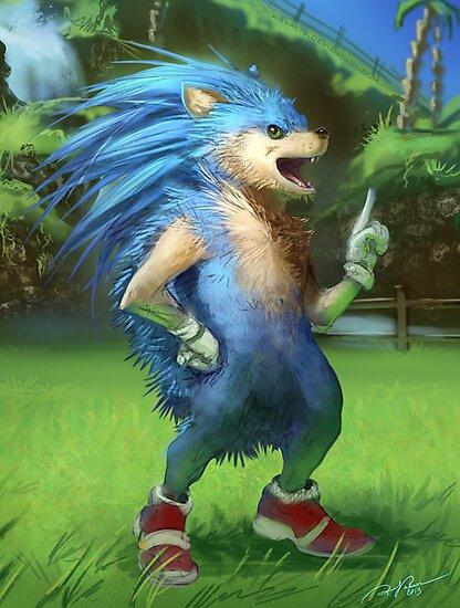 Sonic the Realhog by RJ Palmer