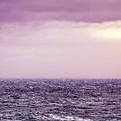 Purple Seas by Thomas Tolkien