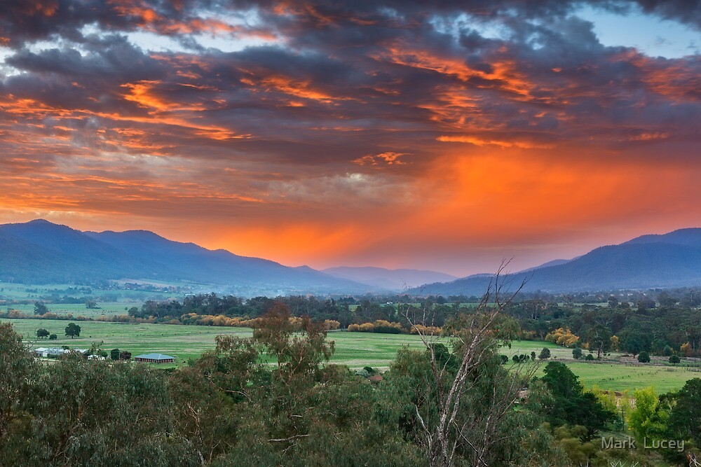 The Valley Red by Mark  Lucey