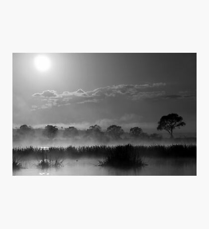 Old Autumn in the Misty Morn Photographic Print