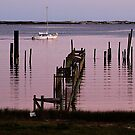 Perdido Bay by Bill Gamblin