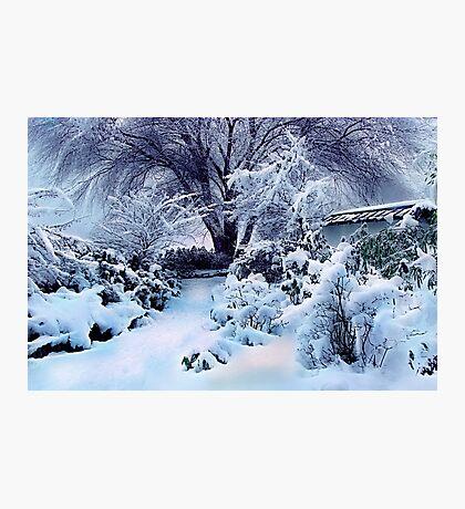 on a freshly fallen silent shroud of snow Photographic Print