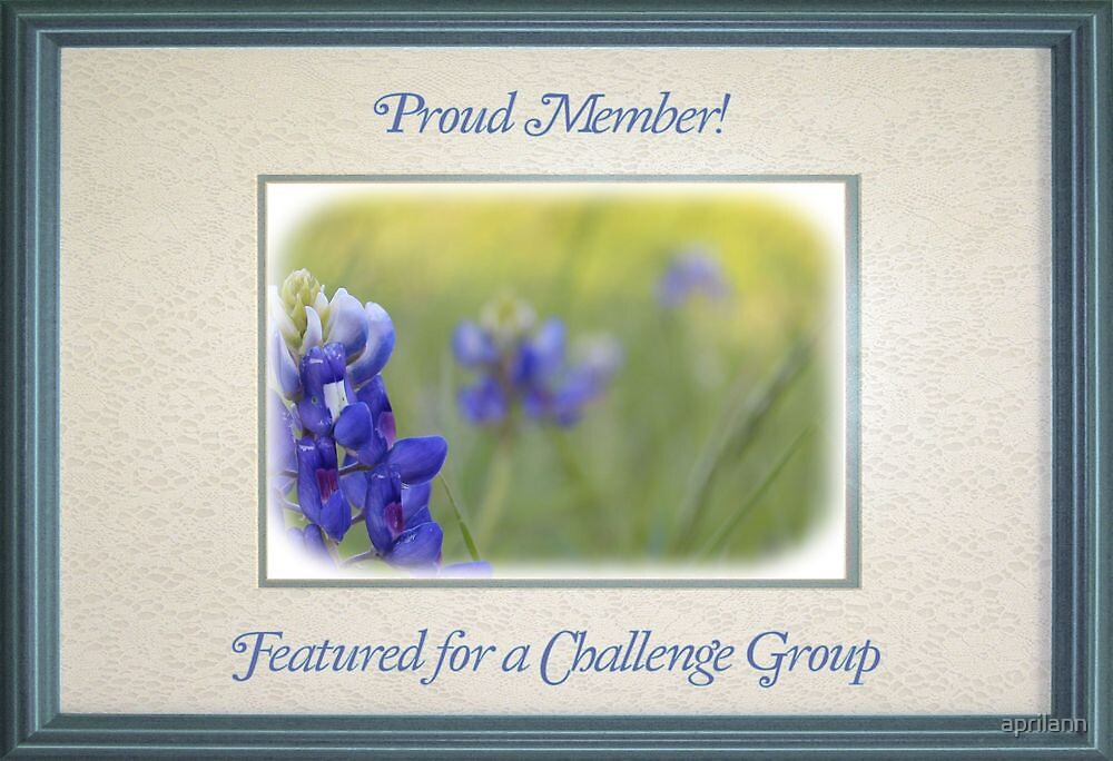 Banner - FFAC - Proud Member by aprilann