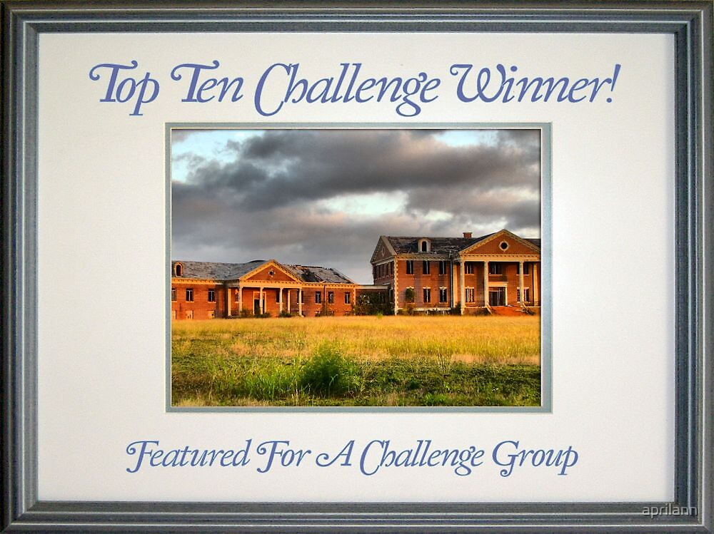 Banner - FFAC - Top Ten Winner by aprilann