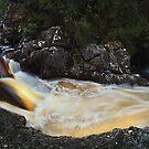Tannin Turbulence - Pencil Pine Canyon Tasmania by Mark Shean