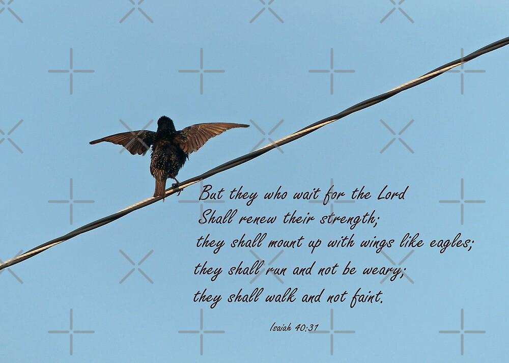 Isaiah 40:31 Greeting Card by FrankieCat