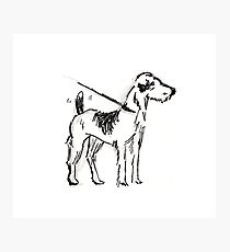 Dog Sketch Photographic Print