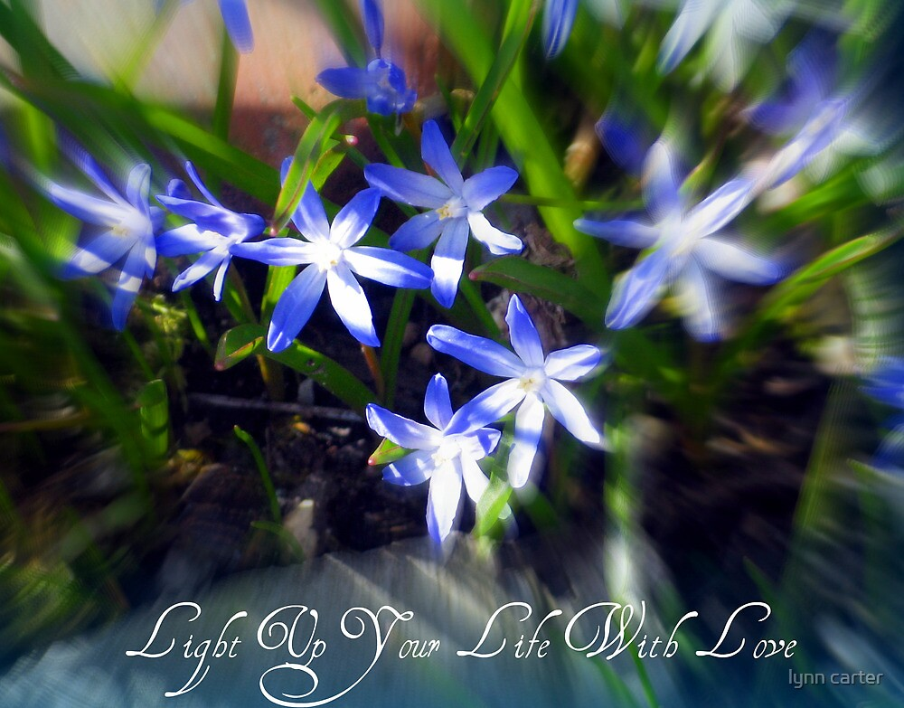 Light Up Your Life With Love by lynn carter