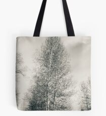 Birch Tree - Lou Campbell State Nature Preserve Tote Bag
