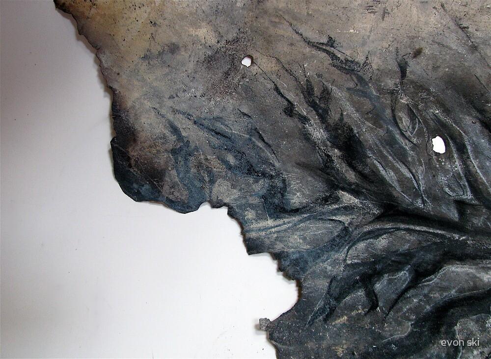 burnt . . .  by evon ski