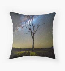 Flanagan Reserve Milky Way Throw Pillow