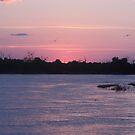 African Sunset by Pauline Adair
