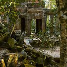 Ta Promh Temple by mlphoto