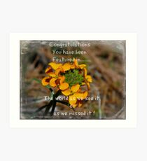 Group Floral feature . Art Print