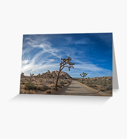 A Mojave Morning Greeting Card